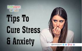 Top 10 Natural Tips for Stress & Anxiety Treatment