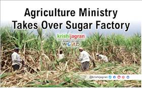 Agriculture Department to Control Sugar Factory