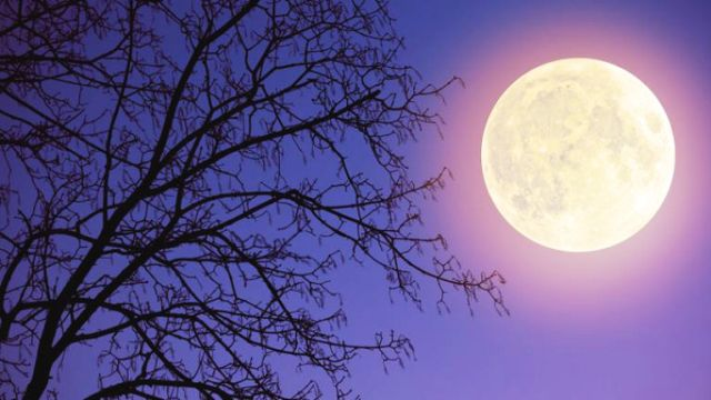 This is what the weather will be for tonight's supermoon extravaganza