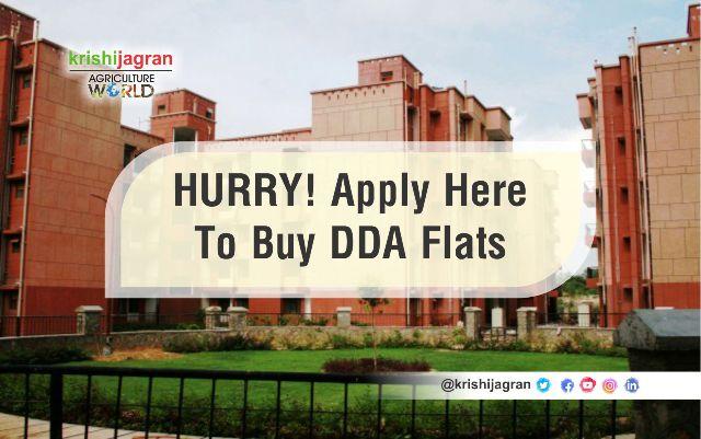 DDA Housing Scheme 2019: Sale Starts, Check Official Brochure