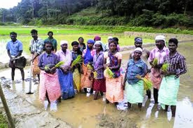 Know about Wayanad and its Farmers