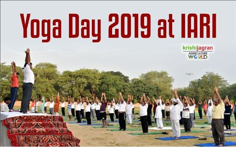 International Yoga Day Celebrations at IARI, Delhi