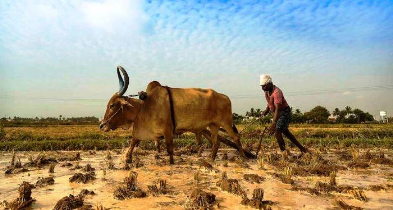 agrarian crisis