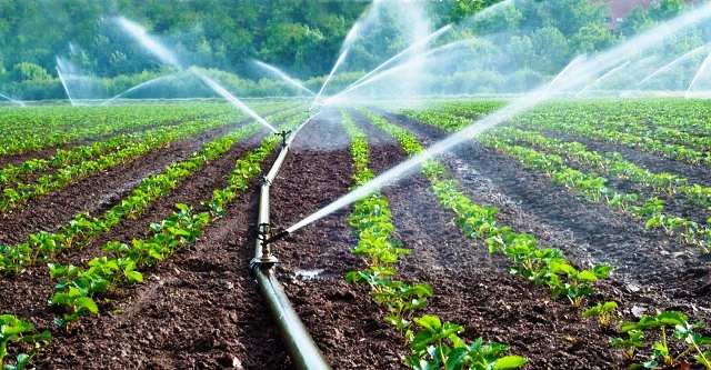 irrigation-reforms
