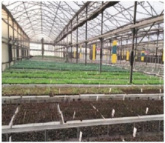Israel`s New Technology for the Indian Farmers