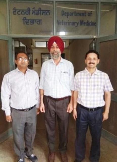 dr. dhiraj, dr. s s randhawa, dr. shukriti