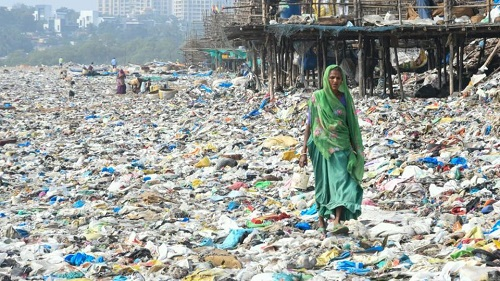 waste from sea