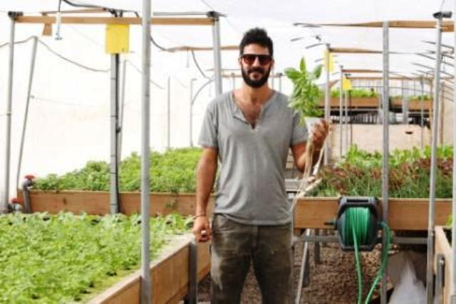 Israel's Rooftop Farm, Peeking from a Shopping Mall