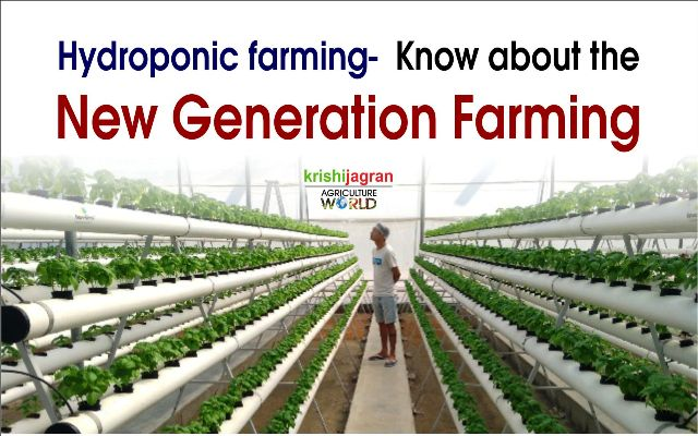 Read How These Indian Hydroponic Farmers are doing Profitable Businesses