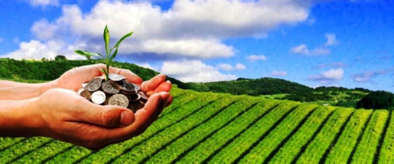 Profitable Agriculture
