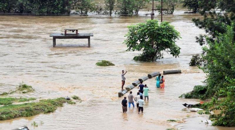 rain himachal