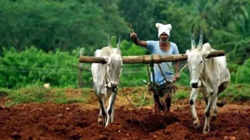 farmer pension