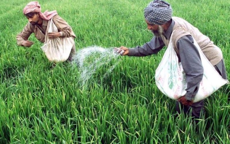 demand of fertilizer