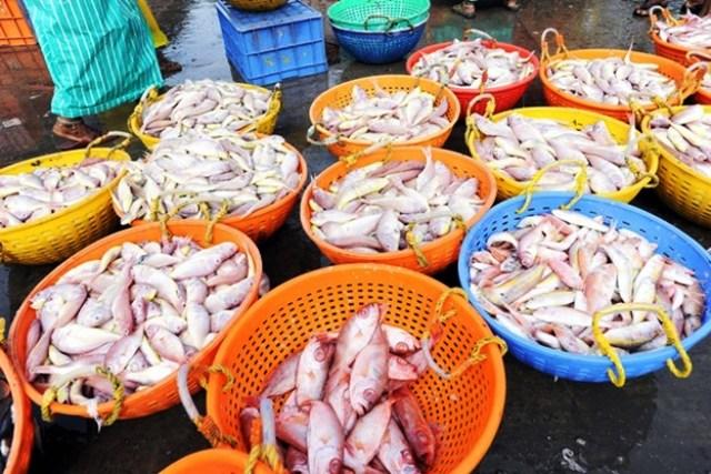 sea-food_reuters