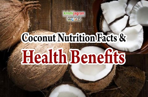Eating Coconut Daily Will Give You These Amazing Health Benefits