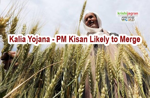 39% Farmers Left Out From PM-Kisan; Here's How They Can Avail the Benefit
