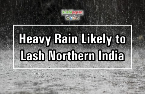 These North Indian States Likely to Receive Heavy Rainfall; Icy Winds from Himalayas Makes Delhiites Shiver