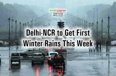 Weather Update! Delhi-NCR Likely to Get Widespread Rainfall on These Dates; Orange Alert Issued in Southern States