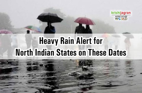 Weather Department Issues Heavy Rain Alert for These Northern States; Delhi Air Quality in 'Very Poor' Category