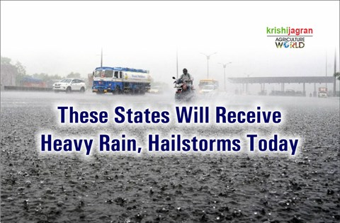 Heavy Rainfall, Hailstorms Likely in These States Today; Cold Wave Grips Entire North India