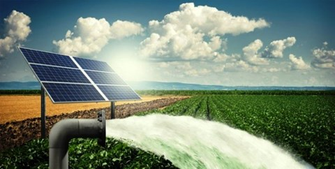 Solar Pump Yojana Update: Electricity Distribution Company Issued Guidelines for Farmers; Check Here
