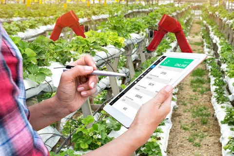 WTC Chandigarh to Start Center-of-Excellence for Food & Agriculture Having AI, Drones, Smart Irrigation & Other Latest Technologies