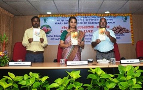 Technology Development in Cashew Benefitted Farmers across the Country