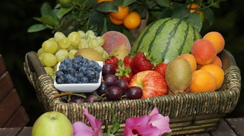 Obesity and Dieting: Diet Plan to Overcome Obesity