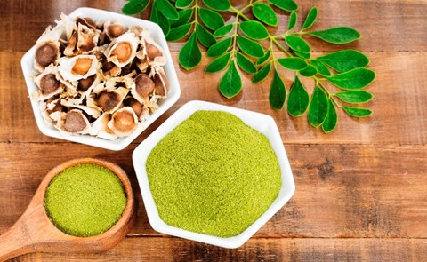Miraculous Health Benefits of Moringa; Know How It Can Help in Fighting Covid-19