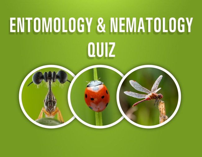 Entomology and Nematology