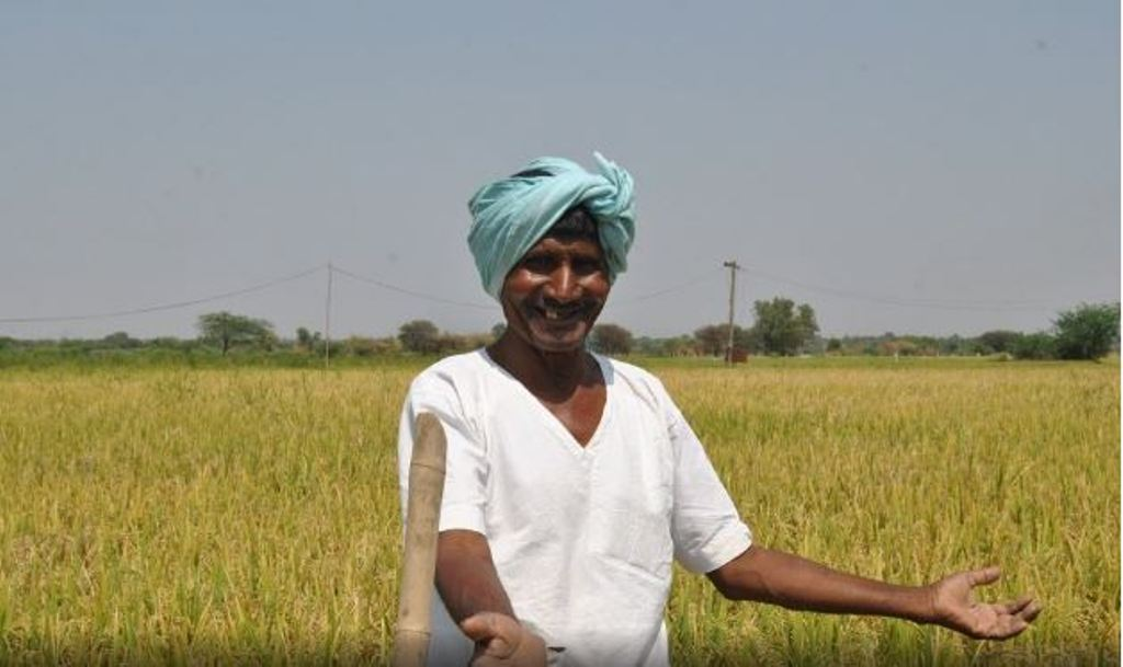 Big News for Farmers: Centre Increases MSP for Six Rabi Crops