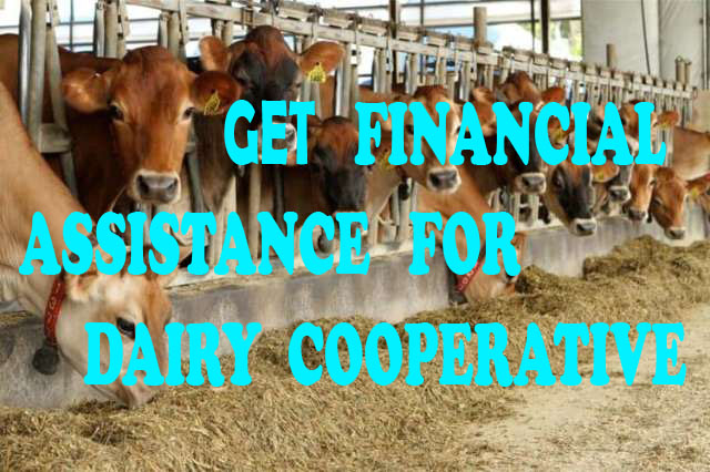 How to get FINANCE for Dairy Co-operatives