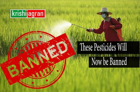 Latest News: Govt Issues Draft Order for Banning 27 Pesticides