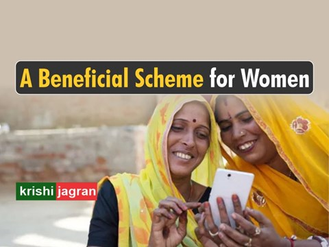 Job Opportunity: Earn Rs. 4000 per Month through This Government Scheme; Know How