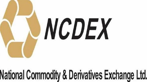 Commodity markets get AGRIDEX, India first Agri Futures Index