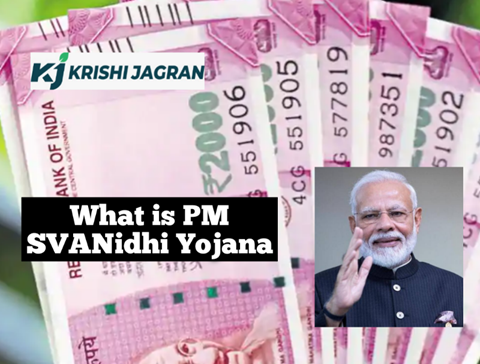 PM SVANidhi Yojana to Offer Cheap Loans to Street Vendors; Know Features, Benefits and How to Apply for It