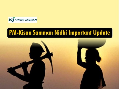 PM Kisan: Conditions Under Which Farmers Will Not Get Benefit of Pradhan Mantri Kisan Samman Nidhi Yojana