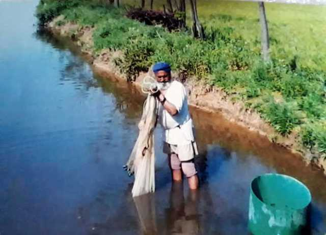 Fish Farming can Earn you Rs 1 75 lacs by Investment of Rs