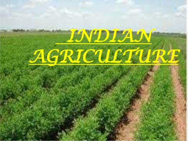 Image Agriculture indian agriculture gifted with best human talent : expert