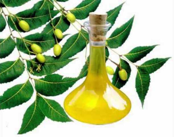 Amazing Skin Benefits of 'Neem Oil'