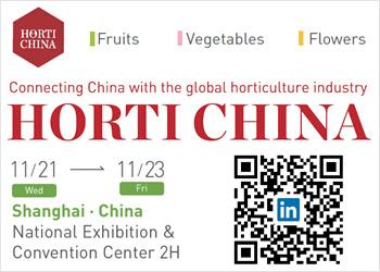 Horti China