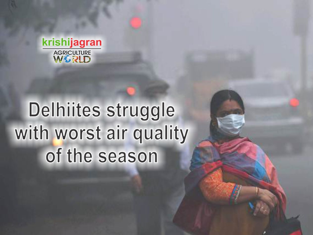 India's air quality has plummeted to worst possible category