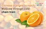 Chinese oranges to reach Moscow through cold-chain train